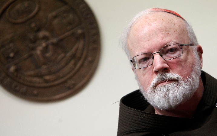 The pope's sexual abuse commission headed by Cardinal Sean P. O'Malley of Boston recommended the bishop tribunal adopted by Pope Francis, but the implementation of their suggestion has stalled.
